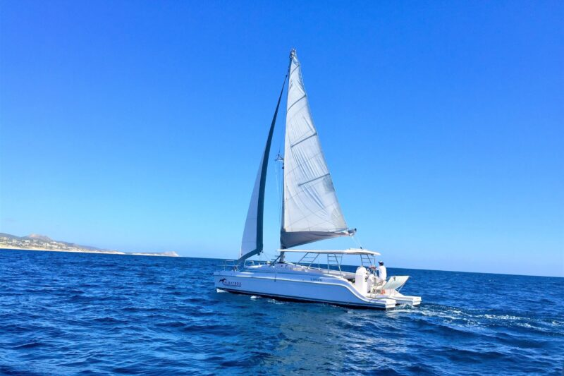 Catamaran Tour & Snorkel Experience From Los Cabos_54 (1)
