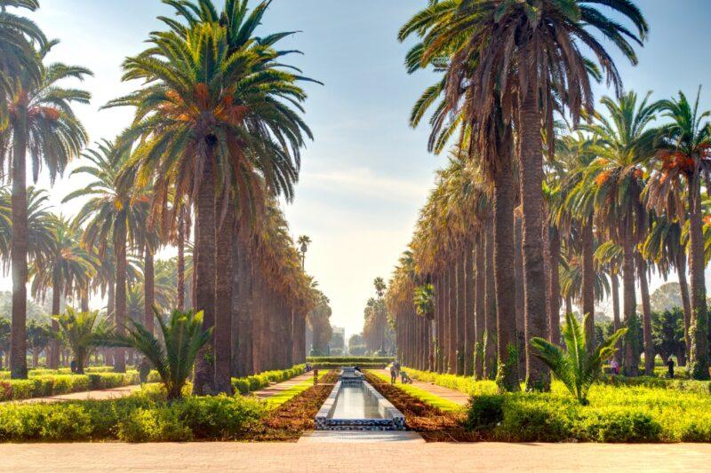 Insider Casablanca Private City Tour (4)