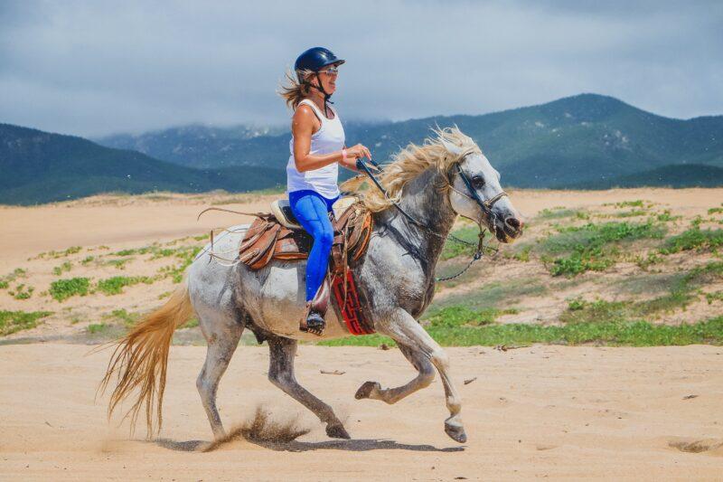 Los Cabos Beach & Desert Horseback Riding Experience For Beginners_54 (4)