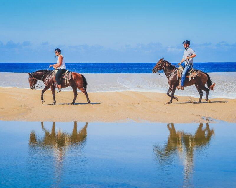 Los Cabos Beach & Desert Horseback Riding Experience For Beginners_54 (5)