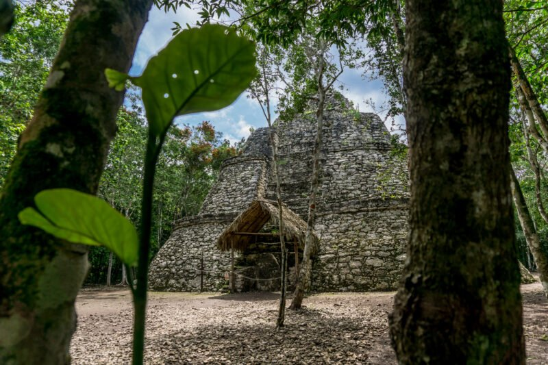 Mayan Culture, Coba & Punta Laguna Tour From The Riviera Maya_129 (1)