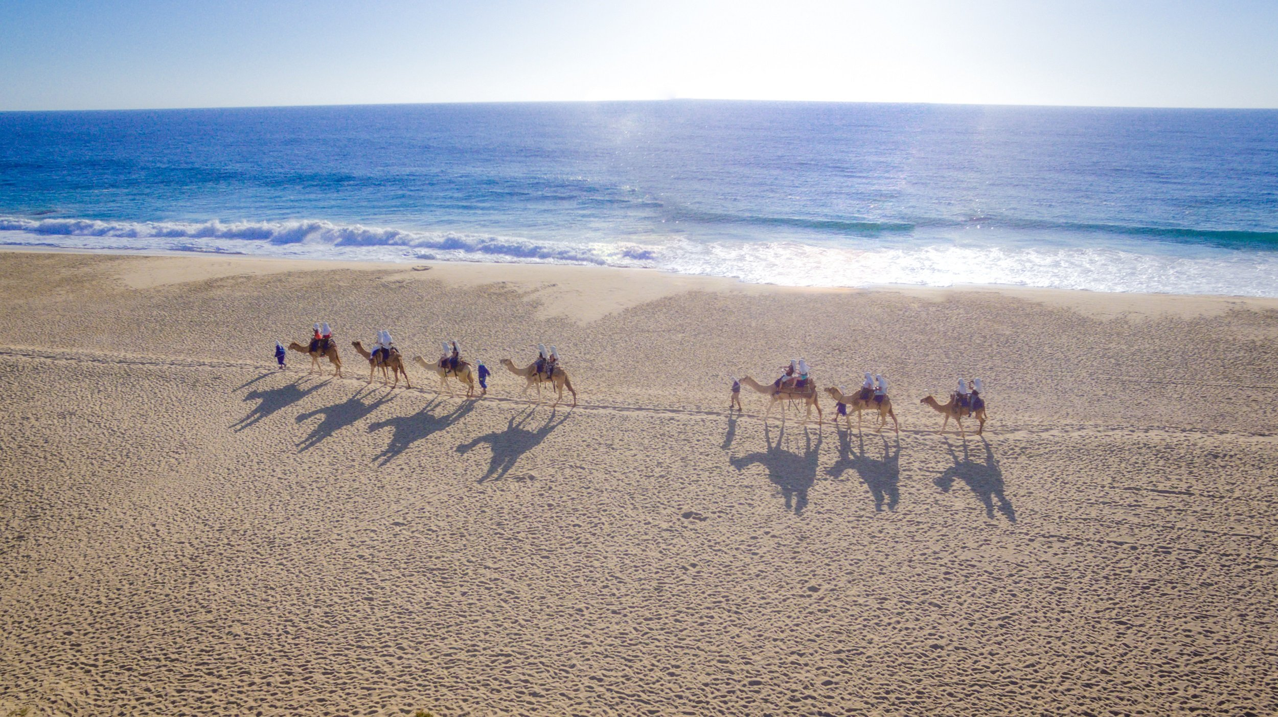 Mexican Outback Tour & Camel Safari From Los Cabos_54 (2)