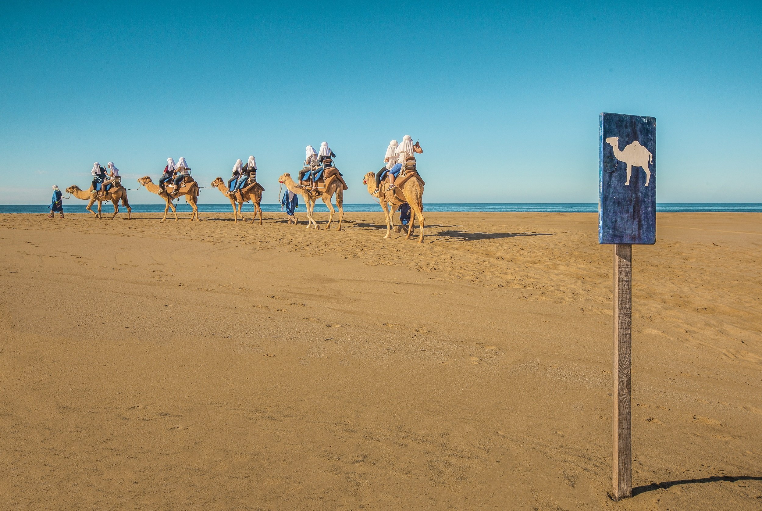Mexican Outback Tour & Camel Safari From Los Cabos_54 (6)