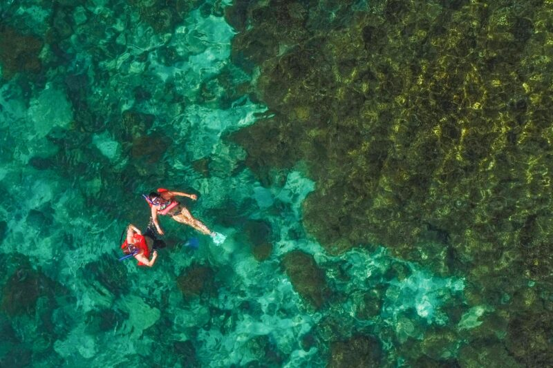 Sea Of Cortez Catamaran & Snorkeling Tour From Los Cabos_54 (3)