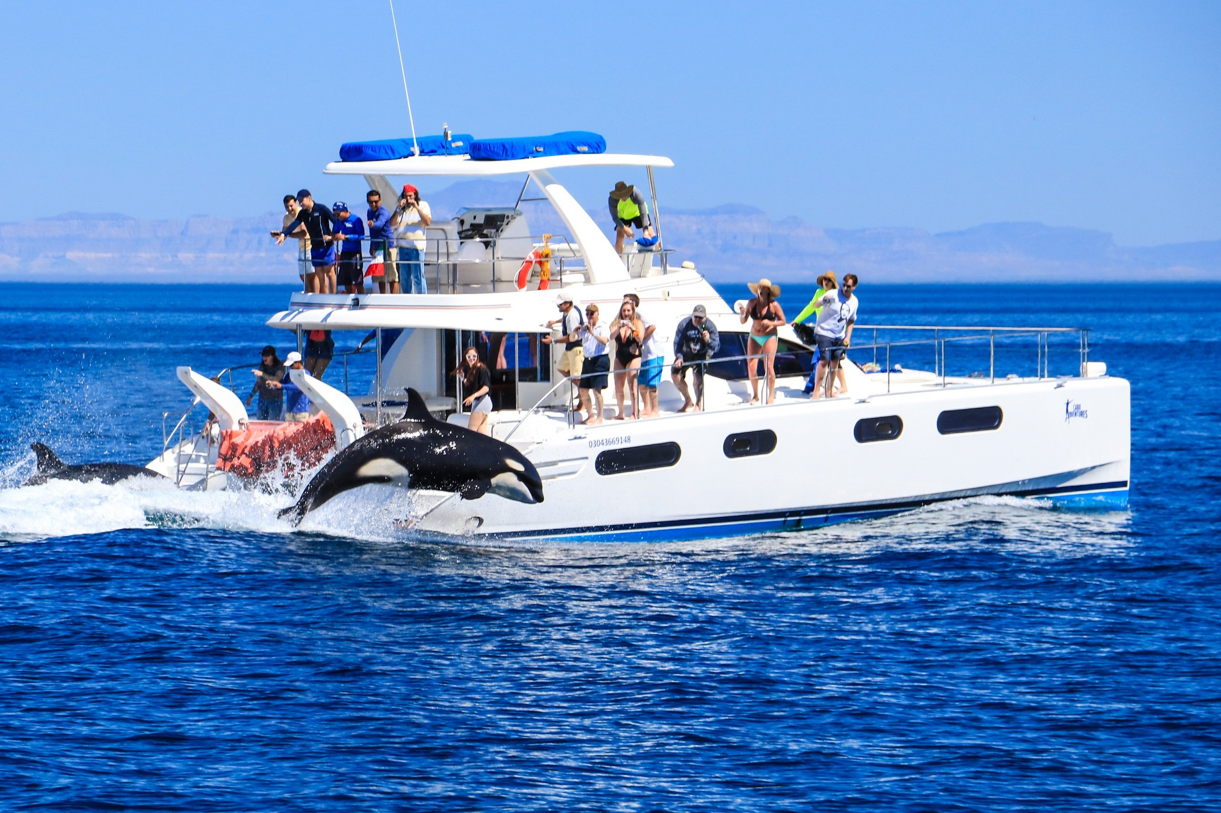 Sail Along Los Cabos Coastline On Our 6 Day Secrets Of Los Cabos Tour Package