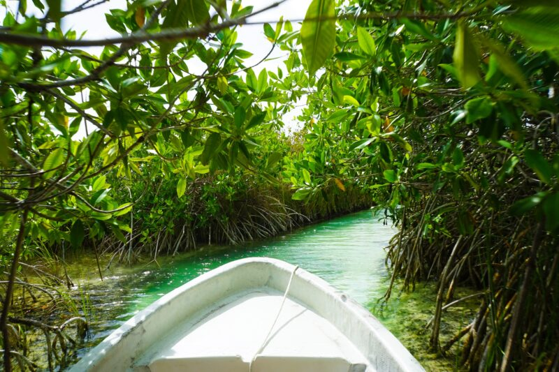 Sian Ka'an Eco Adventure Tour From The Riviera Maya_1
