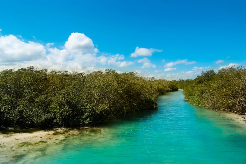 Sian Ka'an Muyil Tour From The Riviera Maya