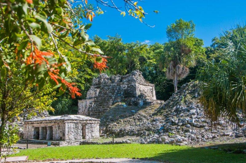 Sian Ka'an Muyil Tour From The Riviera Maya_129 (4)