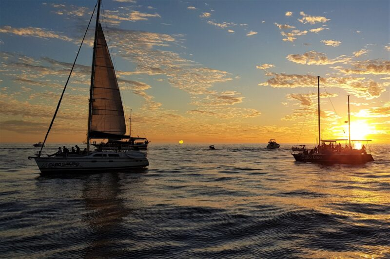Tequila & Taco Tasting And Sunset Cruise From Los Cabos_54