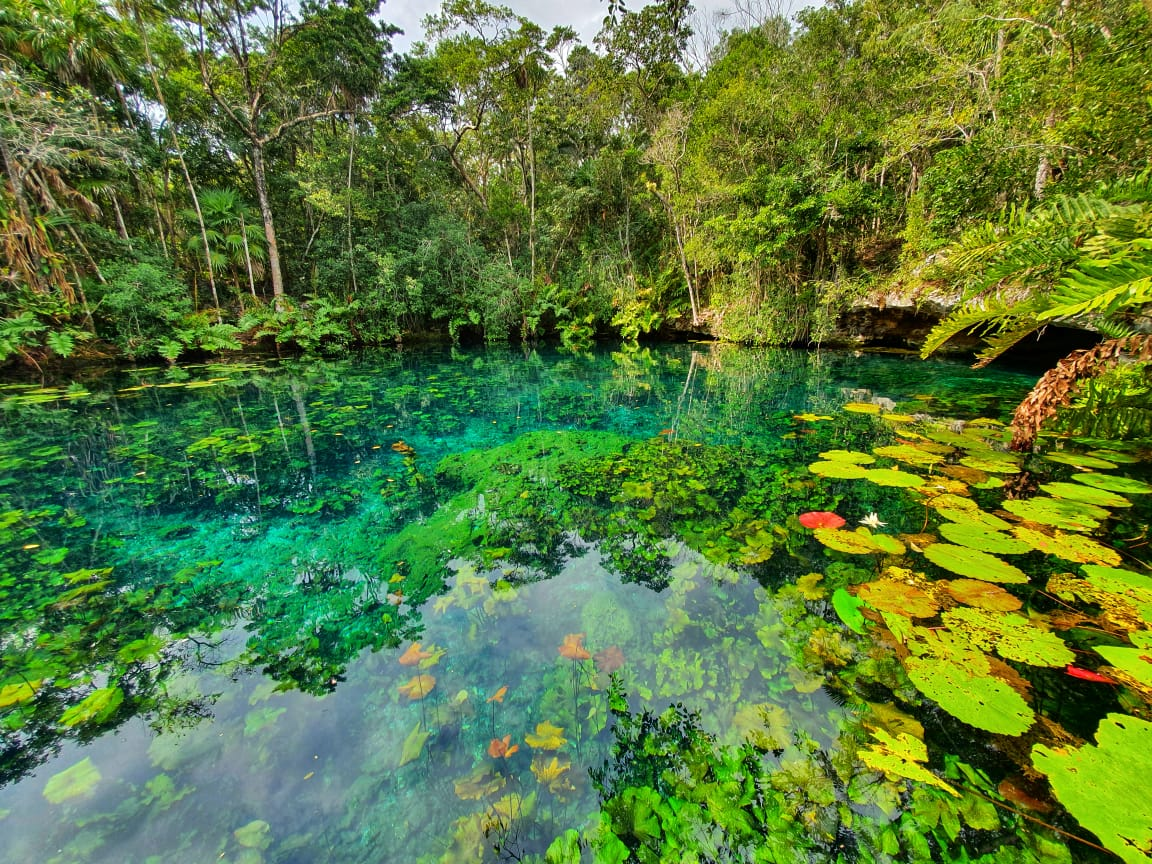 Tulum Culture & Jungle Adventure Tour From The Riviera Maya_mexico Kan Tours (1)