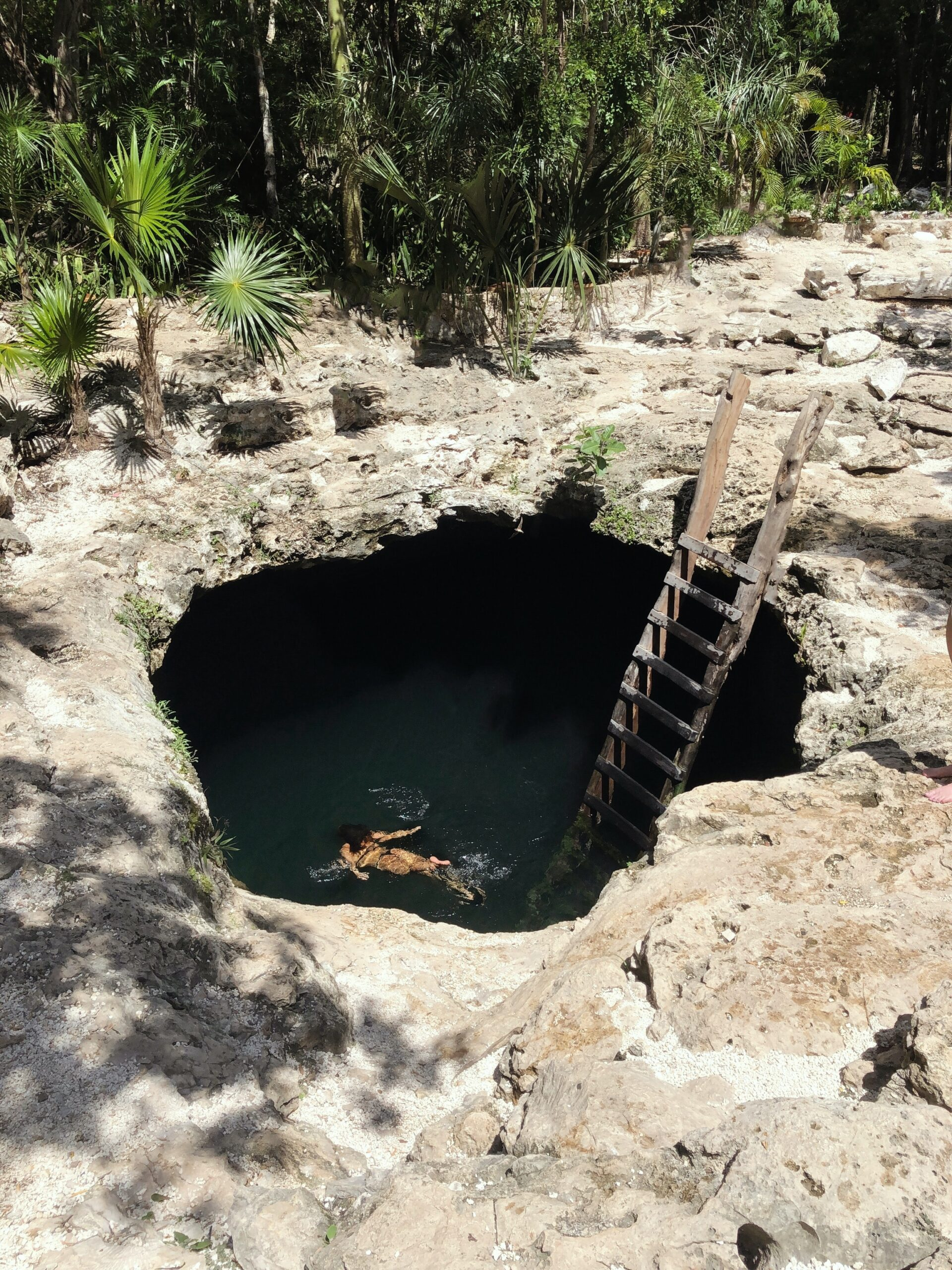 Swim In A Cenote On Our 7 Day Secrets Of The Riviera Maya Tour Package