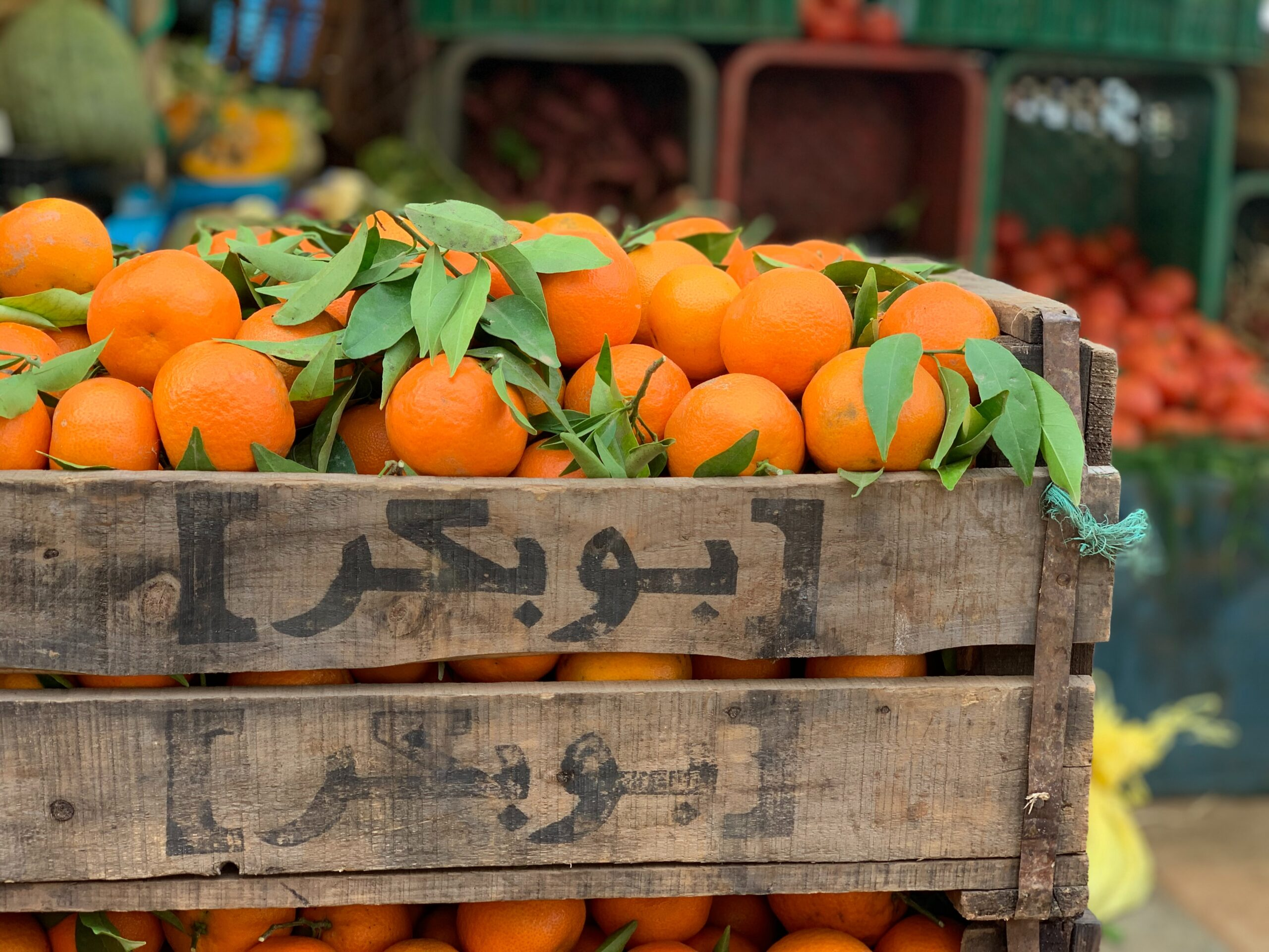 Head To The Medina On Our Moroccan Food Tour In Rabat