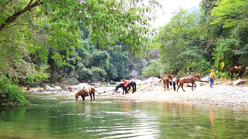 Horseback Riding From Puerto Vallarta_mtg (1)
