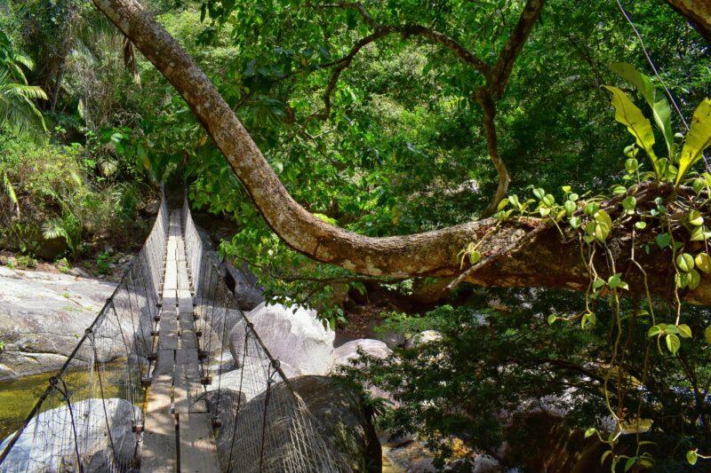 Sierra Madre Mountain Hiking Tour From Puerto Vallarta_bridge