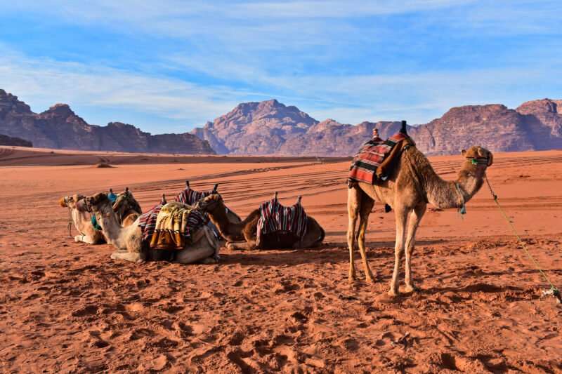 10-day Secrets Of The United Arab Emirates & Jordan Tour Package